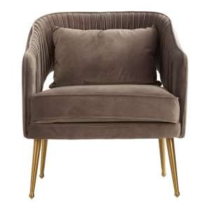 Agnetas Velvet Armchair In Grey With Gold Stainless Steel Legs