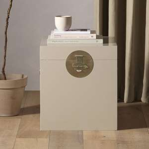 Avlion Wooden Storage Trunk In Oyster Grey