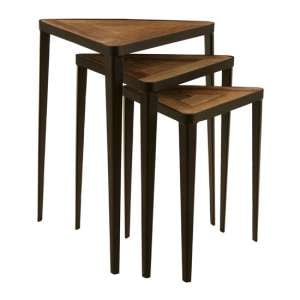 Eltro Wooden Set Of 3 Triangular Nesting Tables In Natural Elm