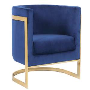 Fenda Velvet Armchair In Blue With Gold Stainless Steel Legs