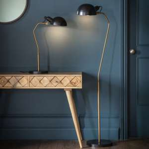 Glenbrook Floor Lamp In Black And Gold