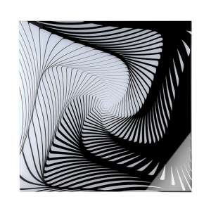 Graphic Picture Acrylic Wall Art In Black And White