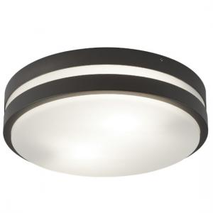 Round Outdoor 2 Light Flush Bulkhead In Dark Grey