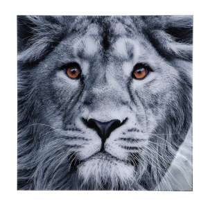 Lion Head Picture Acrylic Wall Art In Black And White
