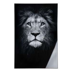 Lion Picture Acrylic Wall Art In Black And White