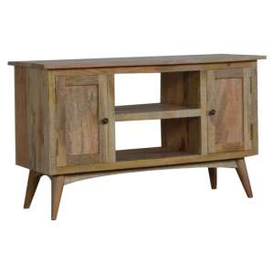 Neligh Wooden TV Stand In Natural Oak Ish With 2 Doors