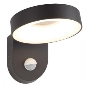 San Diego Outdoor LED Light Wall Bracket In Dark Grey