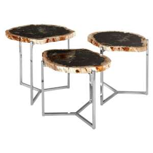 Relics Dark Petrified Wooden Set Of 3 Side Tables