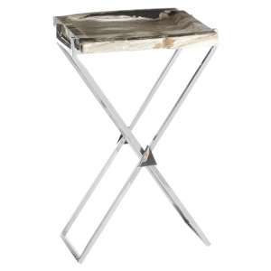 Relics Rectangular Petrified Wooden Side Table With Silver Legs
