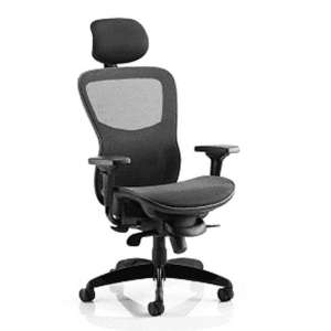Stealth Shadow Ergo Headrest Office Chair In Black Mesh Seat
